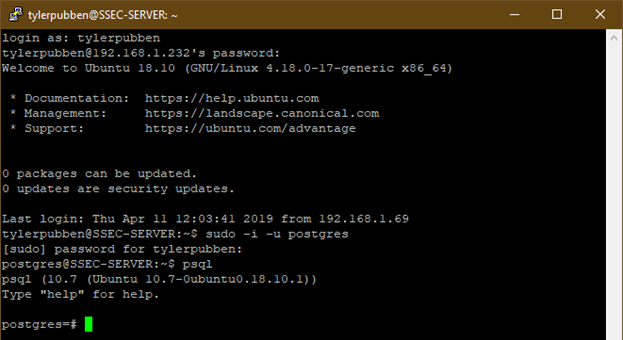 Logging in to PostgreSQL database on Linux terminal | Silver